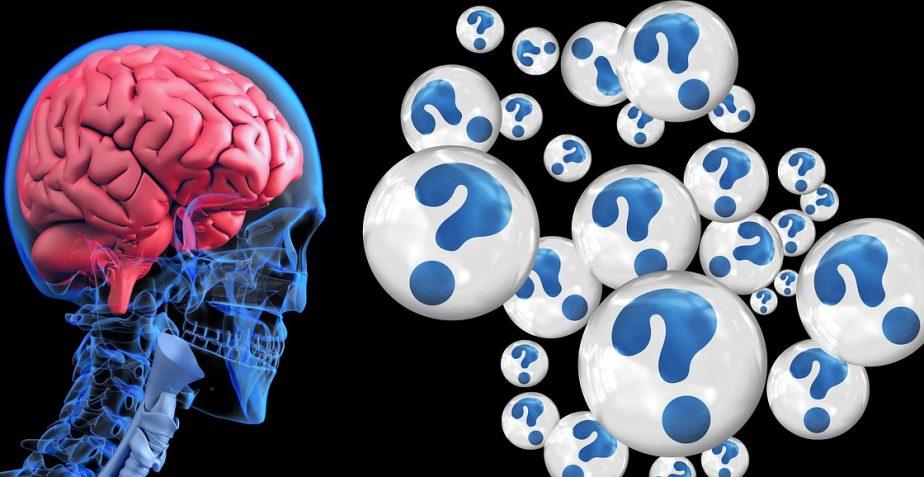 De darm-hersenas en de ziekte van Alzheimer